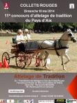 Aix affiche-2014-collets