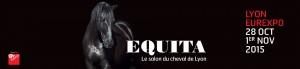 affiche equitalyon