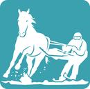 Logo-SkyJoring